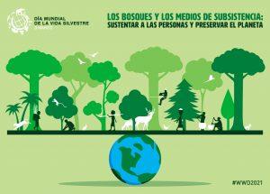 Lee más sobre el artículo Día Mundial de la Vida Silvestre
